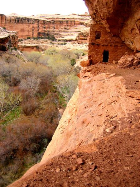 grand gulch utah trails tales topo maps and anasazi sites